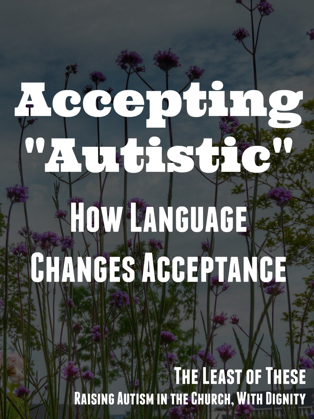 accepting autistic2